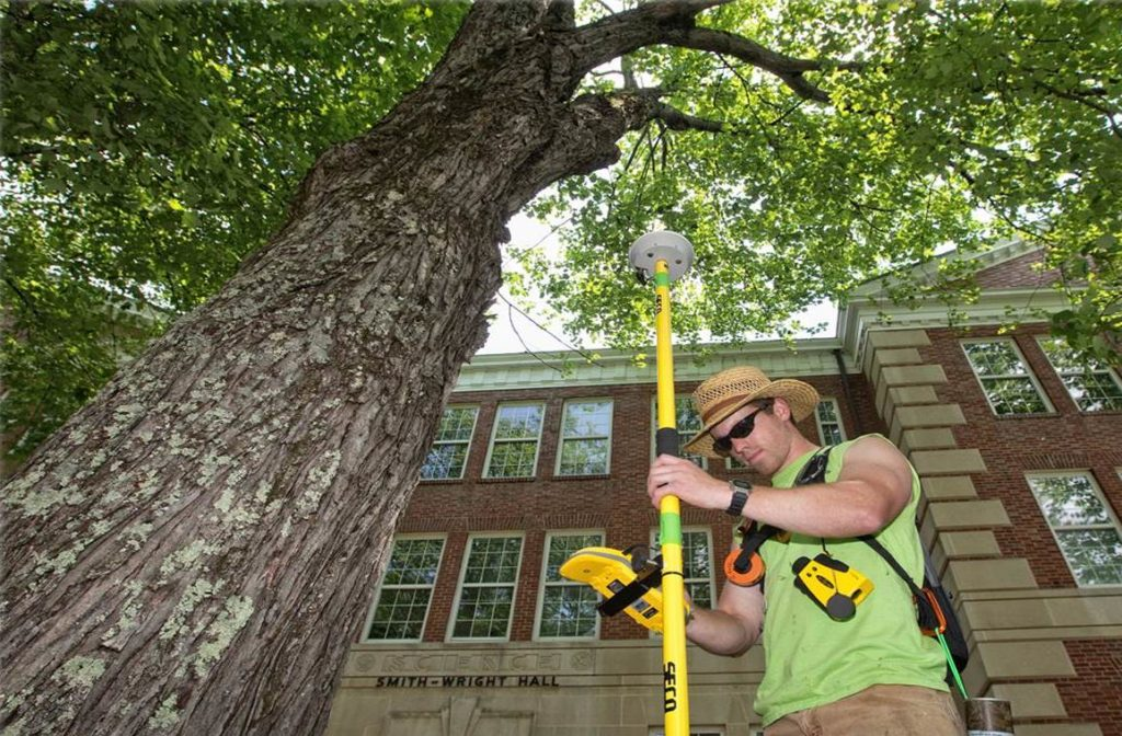 Arborist Consultations-Wesley Chapel FL Tree Trimming and Stump Grinding Services-We Offer Tree Trimming Services, Tree Removal, Tree Pruning, Tree Cutting, Residential and Commercial Tree Trimming Services, Storm Damage, Emergency Tree Removal, Land Clearing, Tree Companies, Tree Care Service, Stump Grinding, and we're the Best Tree Trimming Company Near You Guaranteed!