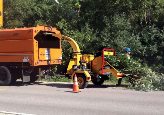 Commercial Tree Services-Wesley Chapel FL Tree Trimming and Stump Grinding Services-We Offer Tree Trimming Services, Tree Removal, Tree Pruning, Tree Cutting, Residential and Commercial Tree Trimming Services, Storm Damage, Emergency Tree Removal, Land Clearing, Tree Companies, Tree Care Service, Stump Grinding, and we're the Best Tree Trimming Company Near You Guaranteed!
