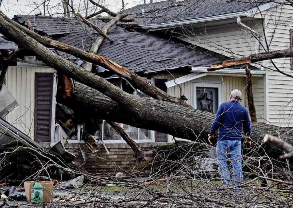Storm Damage-Wesley Chapel FL Tree Trimming and Stump Grinding Services-We Offer Tree Trimming Services, Tree Removal, Tree Pruning, Tree Cutting, Residential and Commercial Tree Trimming Services, Storm Damage, Emergency Tree Removal, Land Clearing, Tree Companies, Tree Care Service, Stump Grinding, and we're the Best Tree Trimming Company Near You Guaranteed!